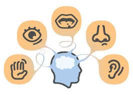 Sensory processing and ADHD