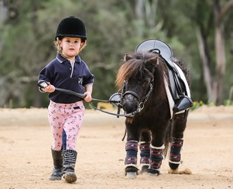 Equine Activities and Autism