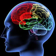 The Benefits of Neurofeedback for People with Traumatic Brain Injuries