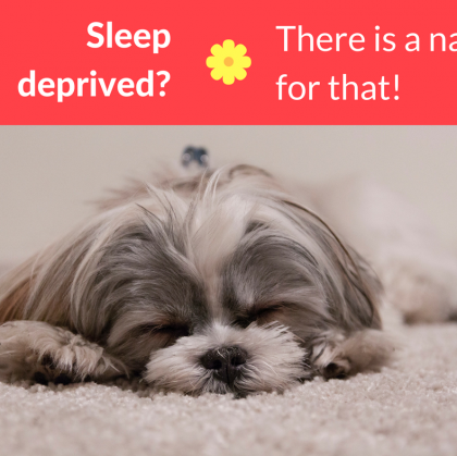 Not getting enough sleep? There's a nap for that.